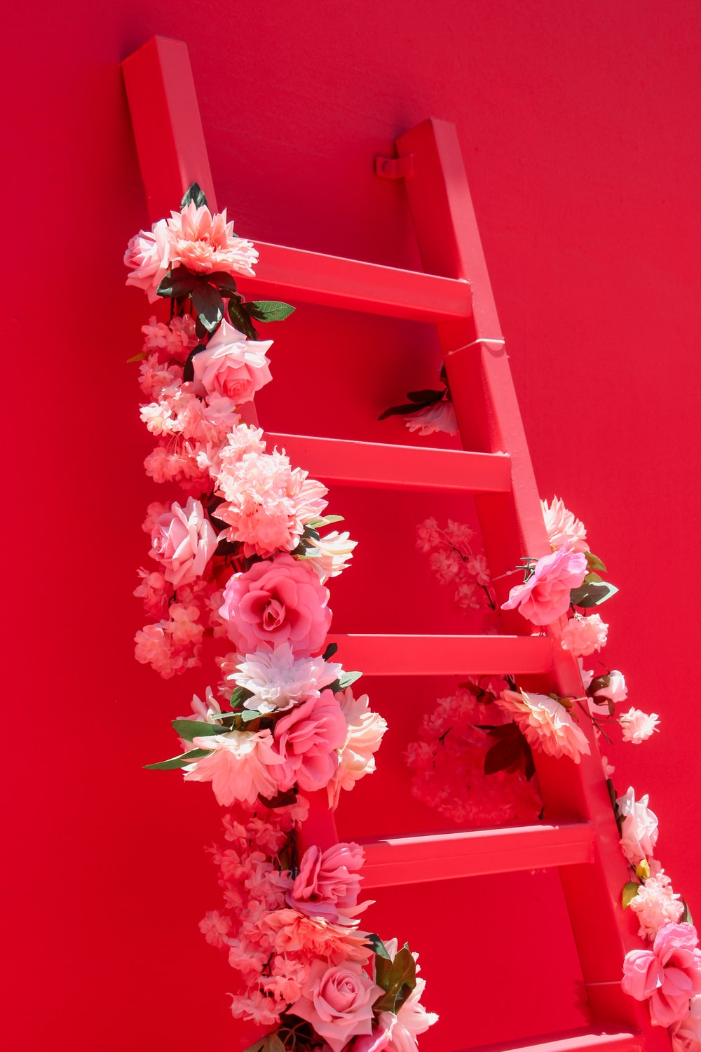 pink and white flowers on pink wooden frame