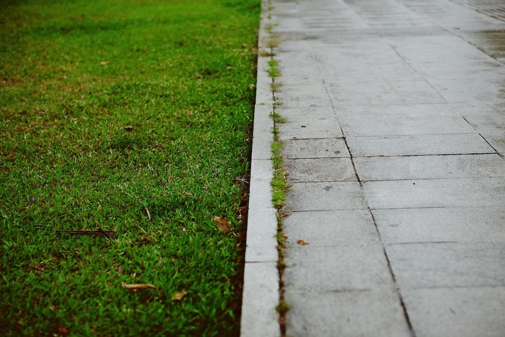 green grass field near gray concrete pathway