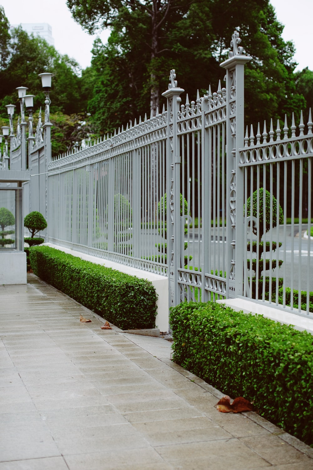 white wooden fence near green plants during daytime