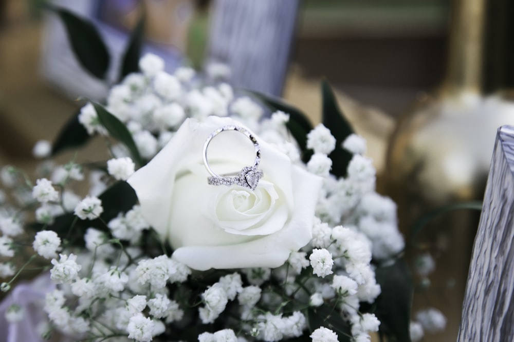white rose bouquet in close up photography