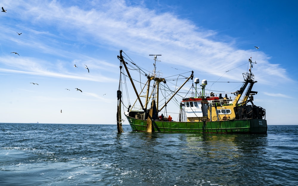 green and brown boat on sea under blue sky during daytime