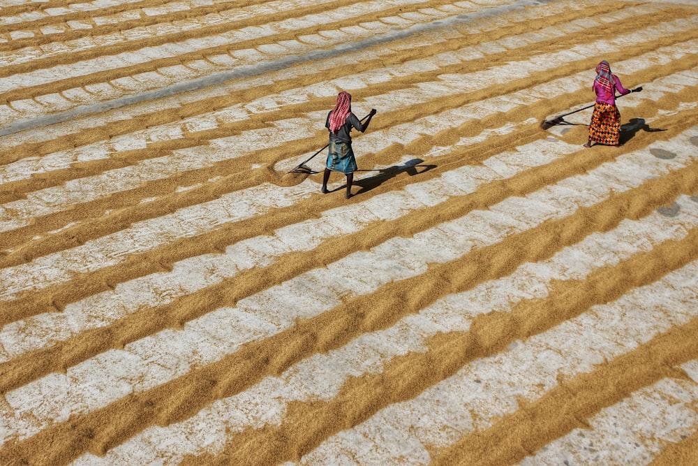 woman in pink jacket walking on brown and white stripe carpet