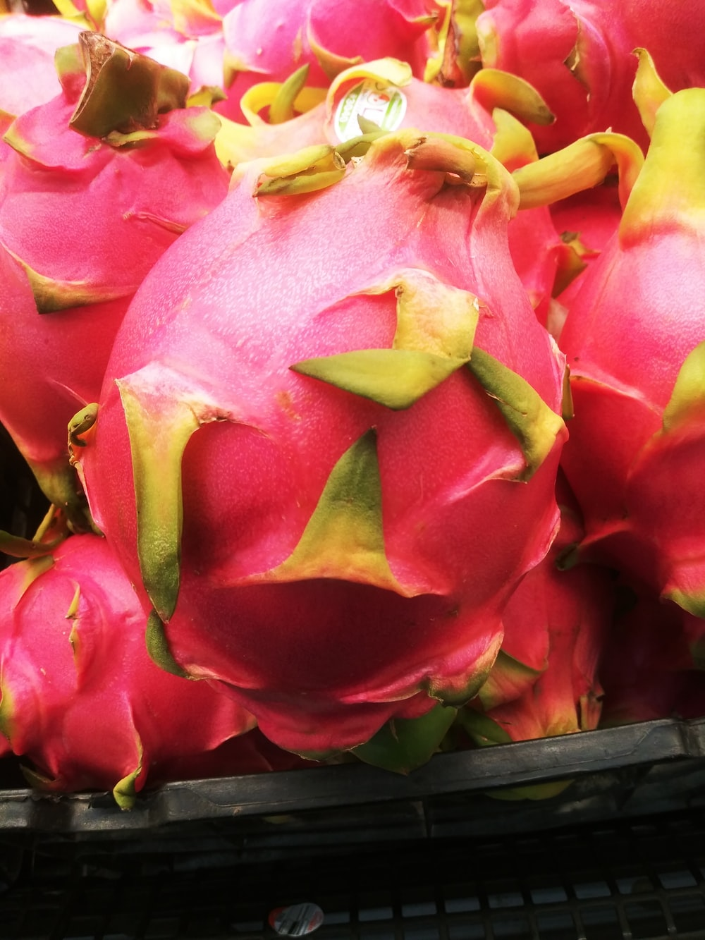 pink and green dragon fruit