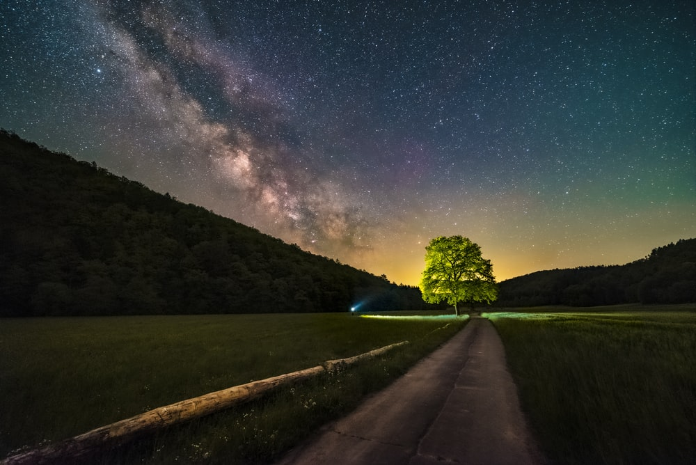 green grass field near road under starry night