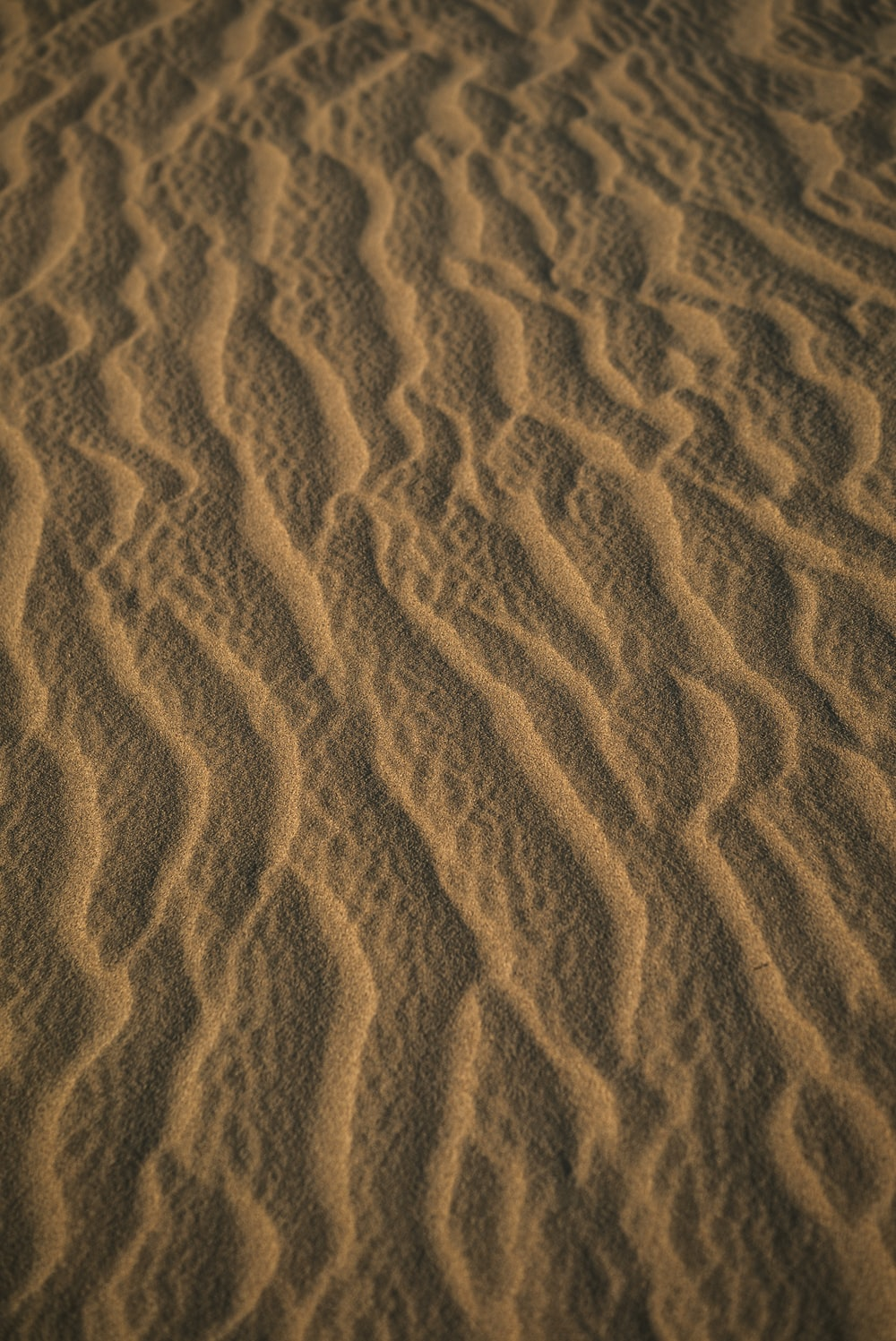 brown sand with shadow of person