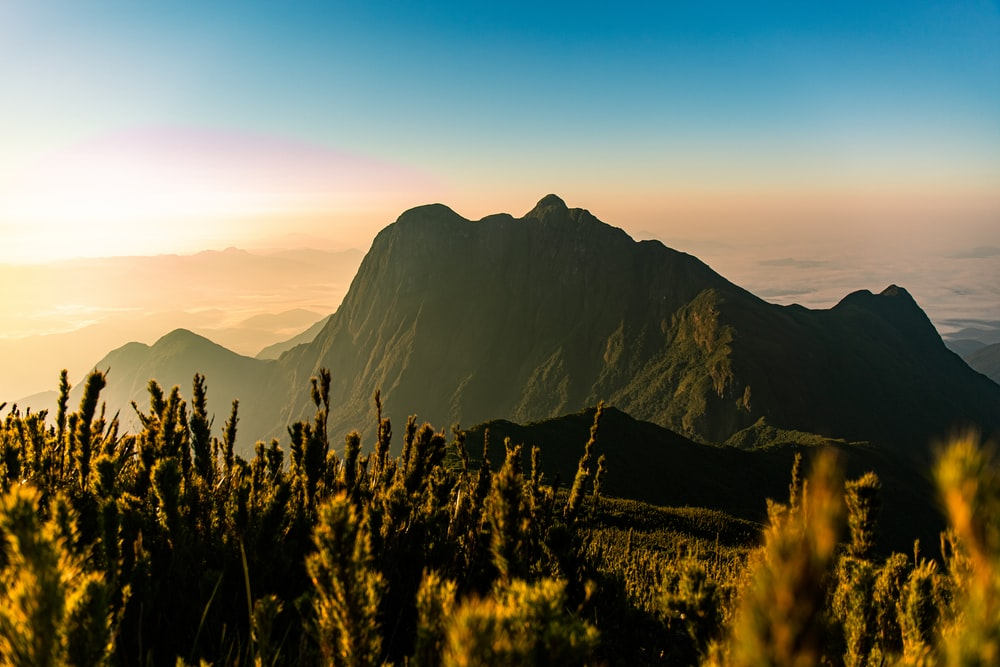 green grass and mountain during sunrise