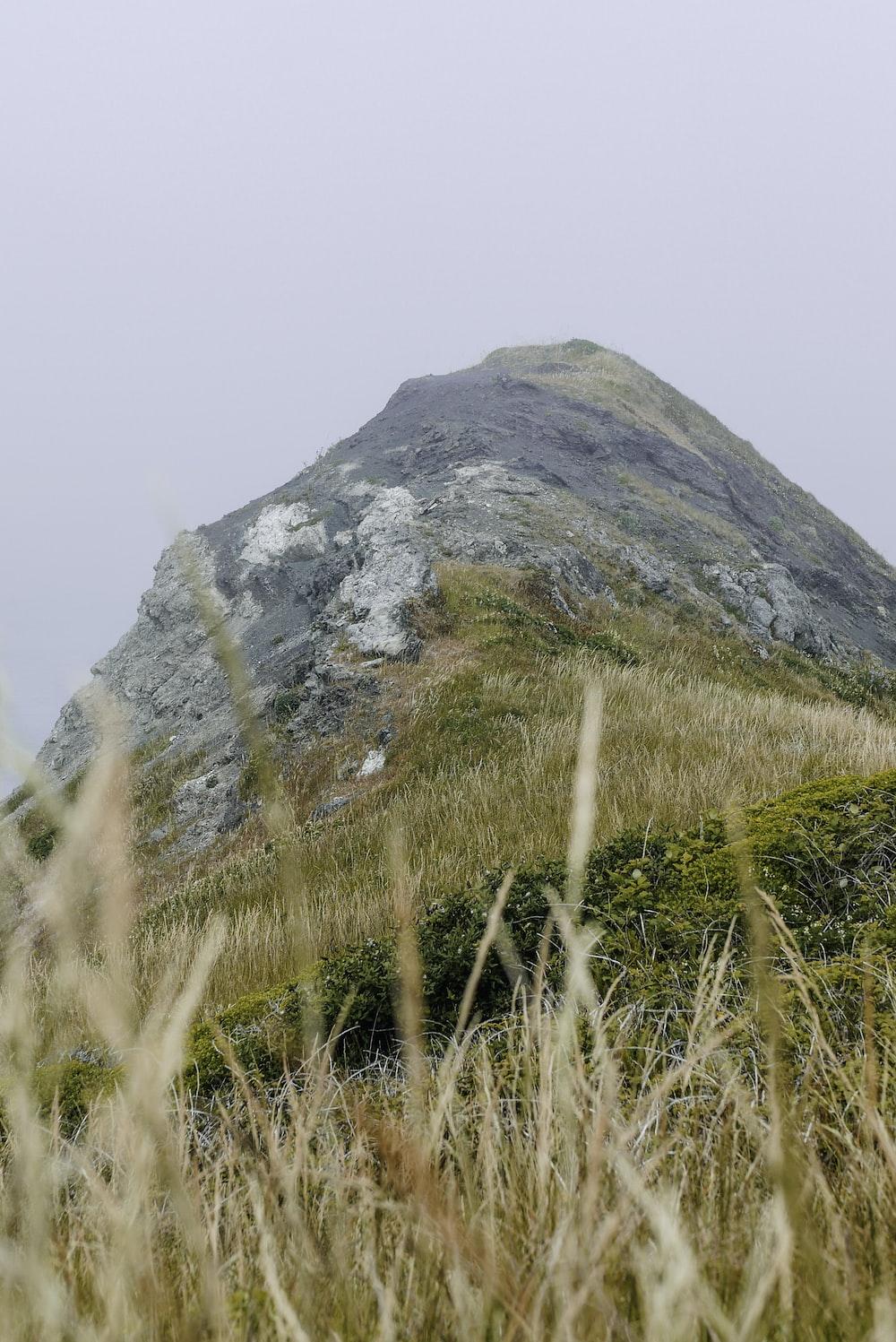 green grass field near gray mountain during daytime