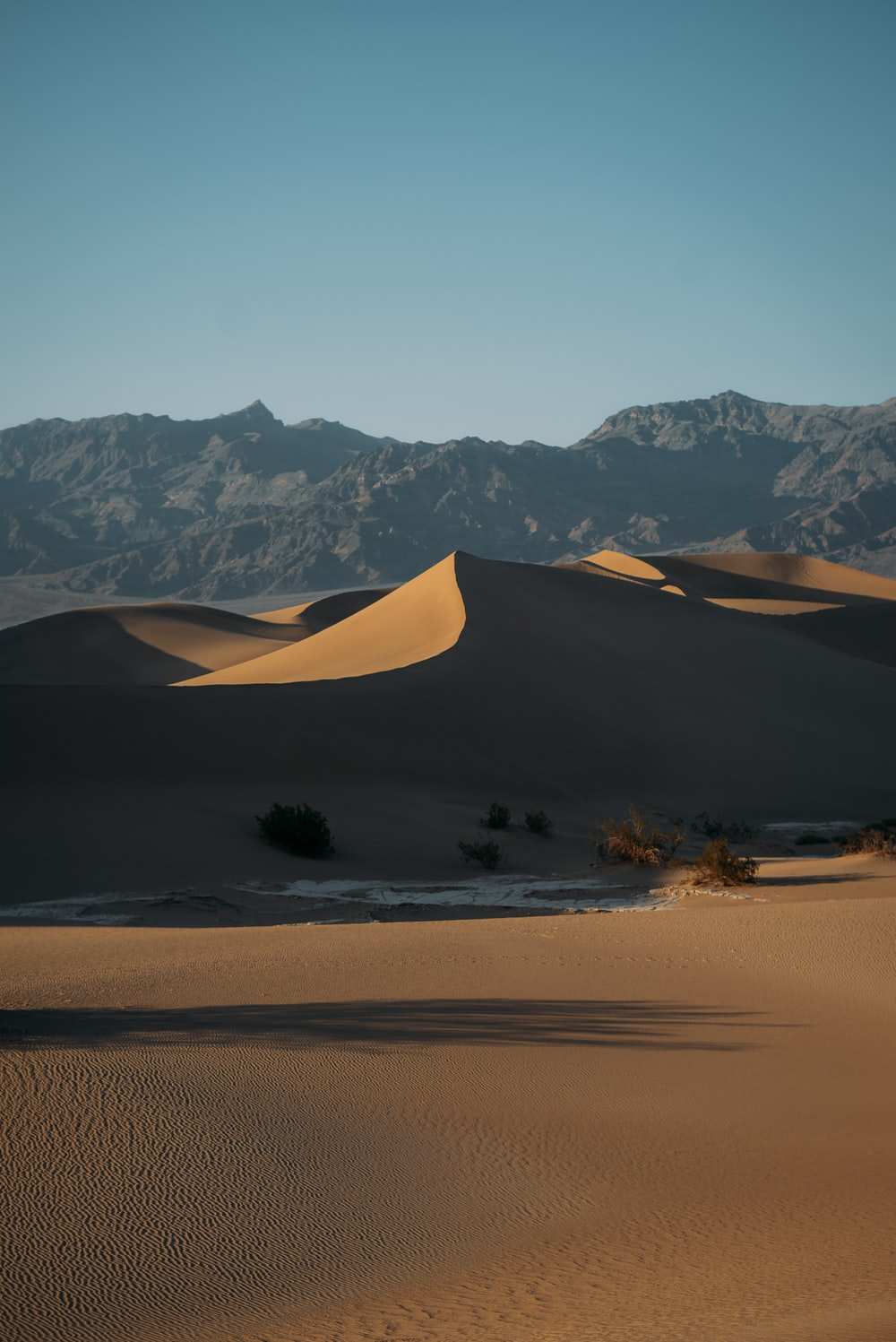 brown sand and green trees near mountain during daytime