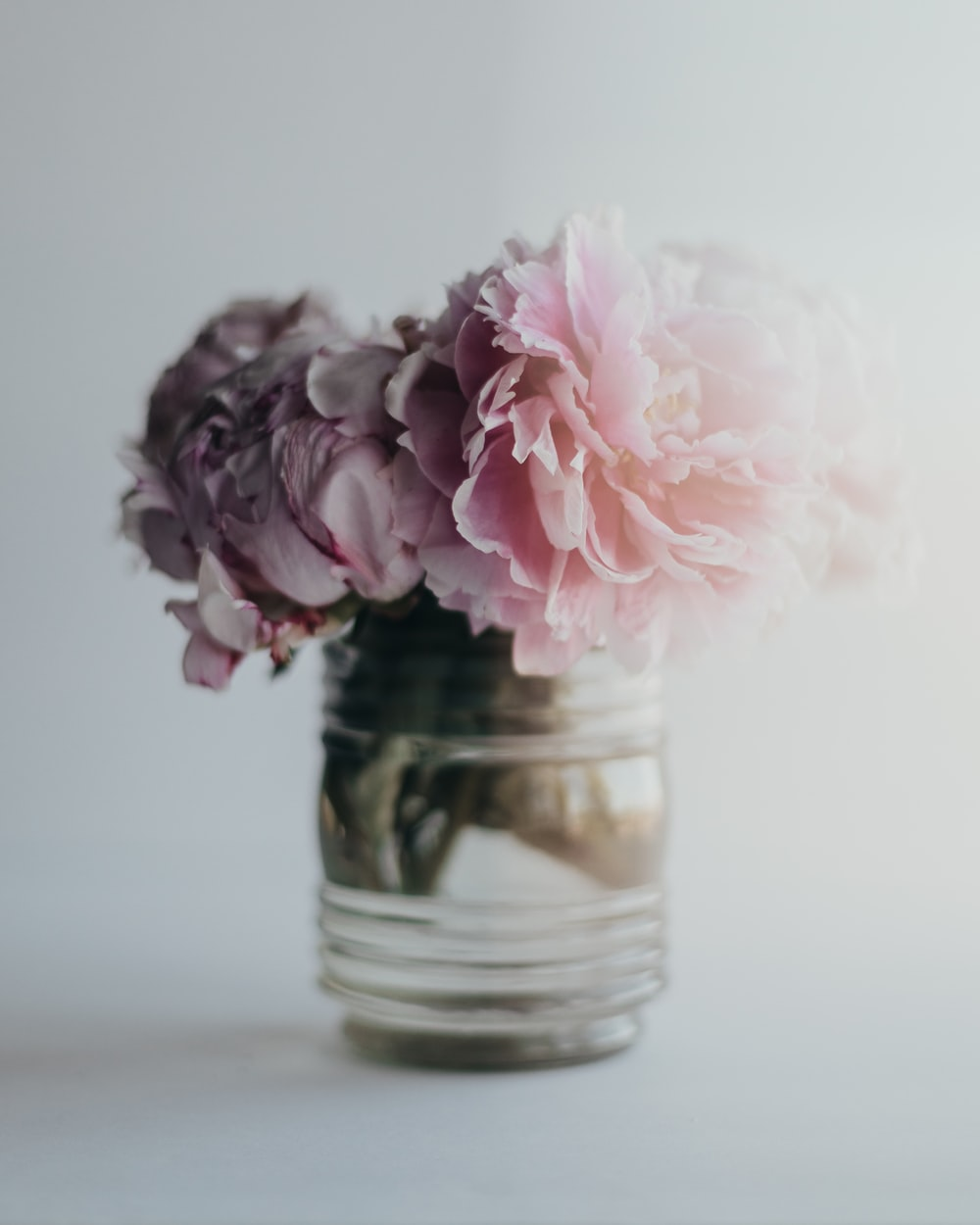 pink flower in clear glass jar