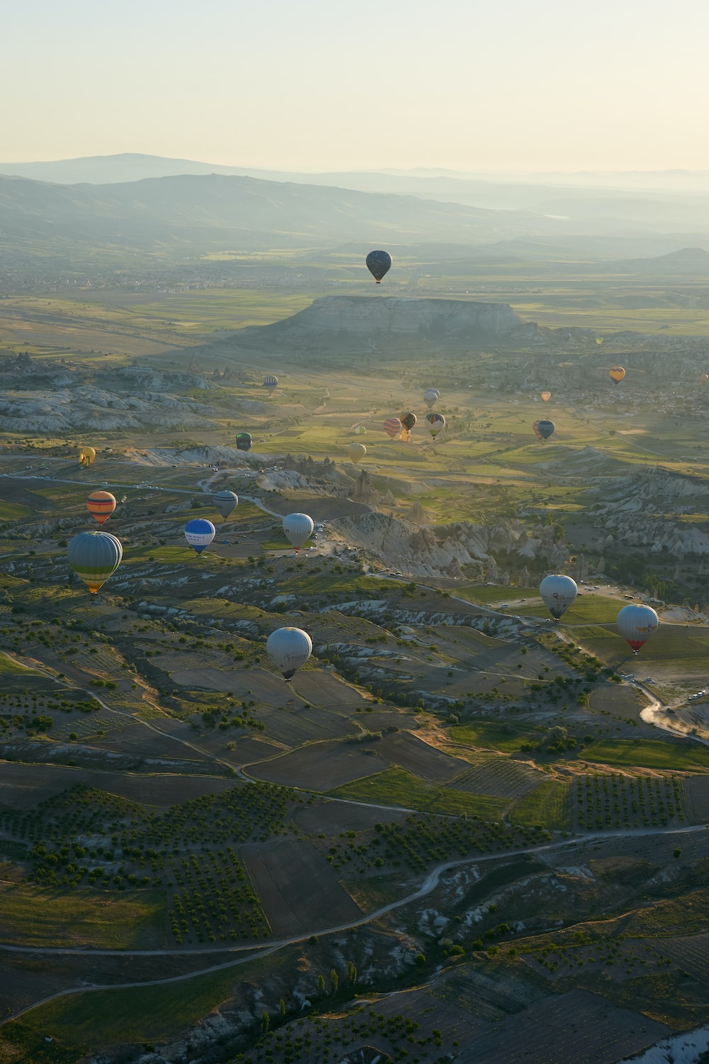 hot air balloons flying over green grass field during daytime