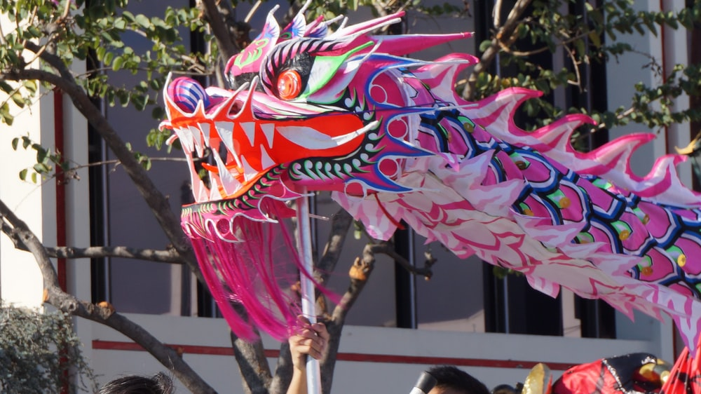 pink blue and yellow dragon decor