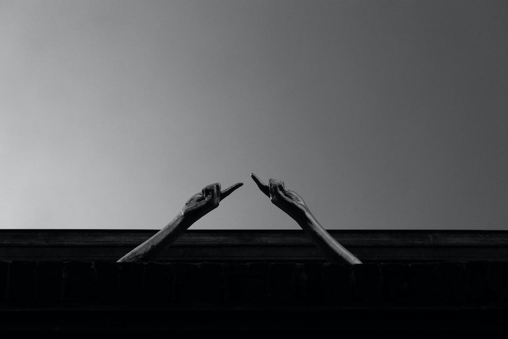 grayscale photo of a bird on a roof