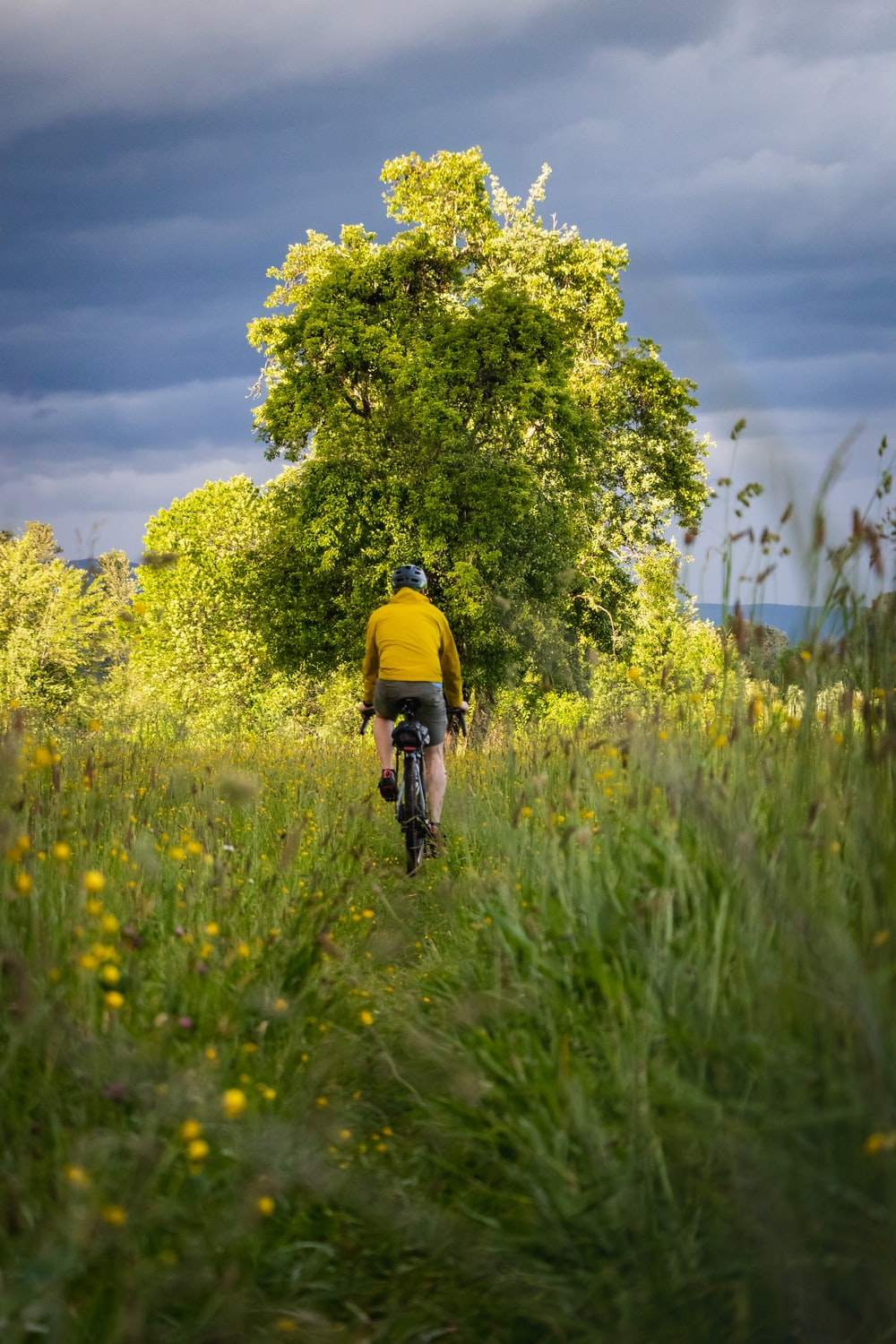 man in yellow shirt riding bicycle on green grass field during daytime