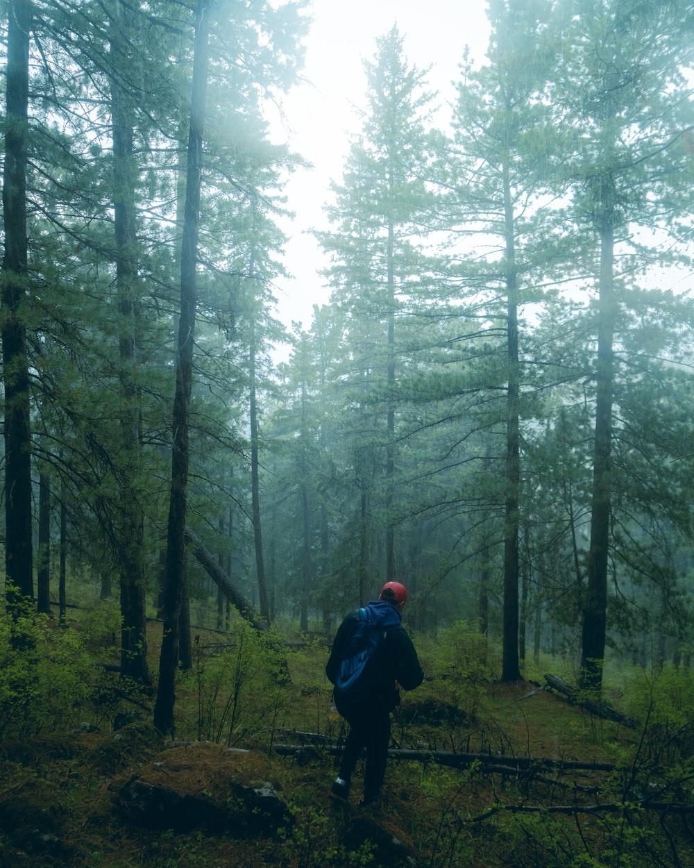 man in black jacket walking on forest during daytime