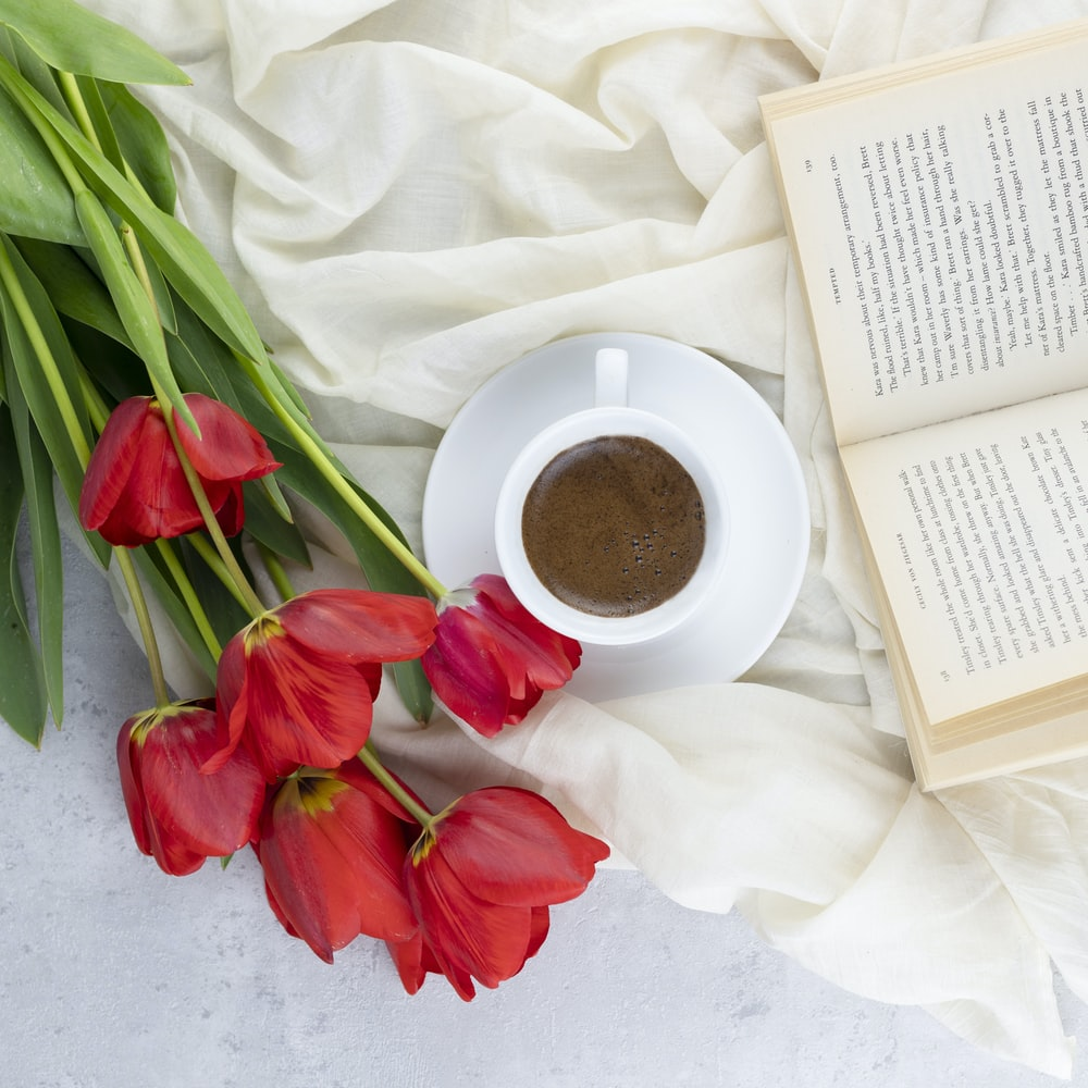red and white tulips beside white ceramic mug with coffee