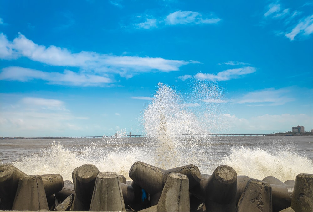 brown wooden logs on seashore under blue sky and white clouds during daytime