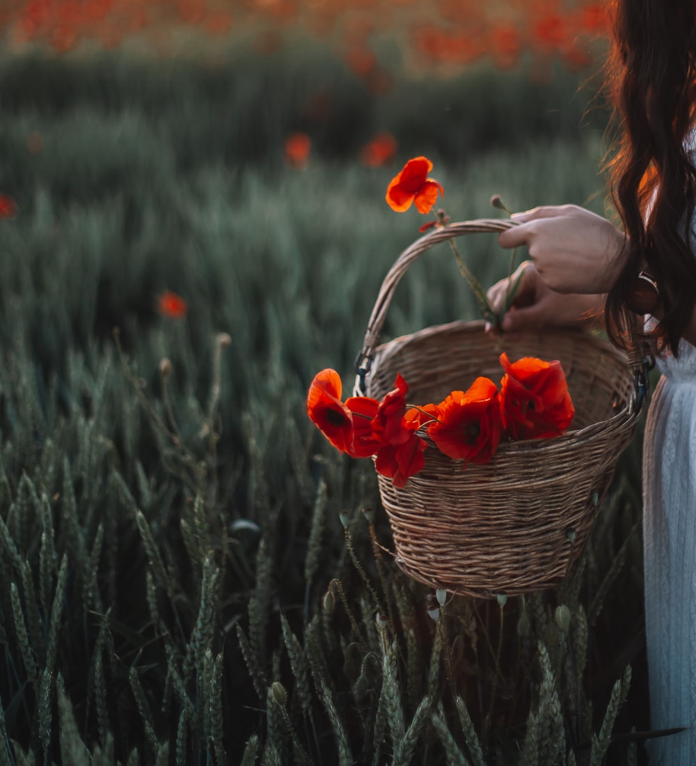 woman in gray sweater holding basket with red flowers