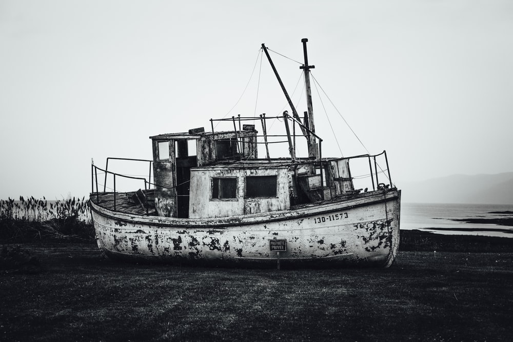 white and brown boat on body of water