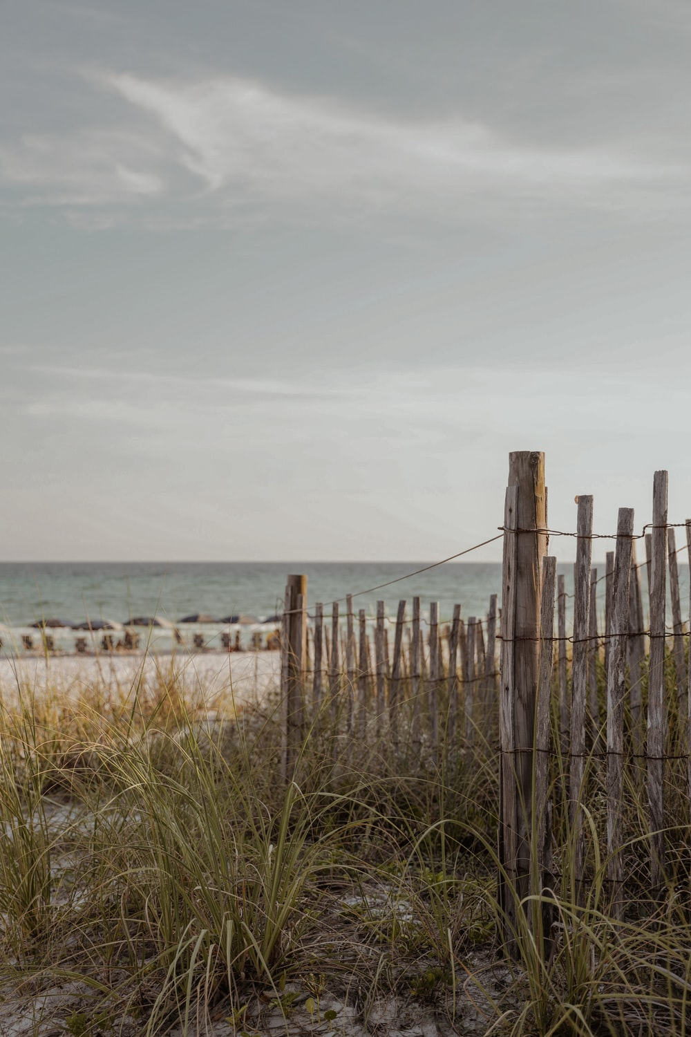 brown wooden fence on seashore during daytime