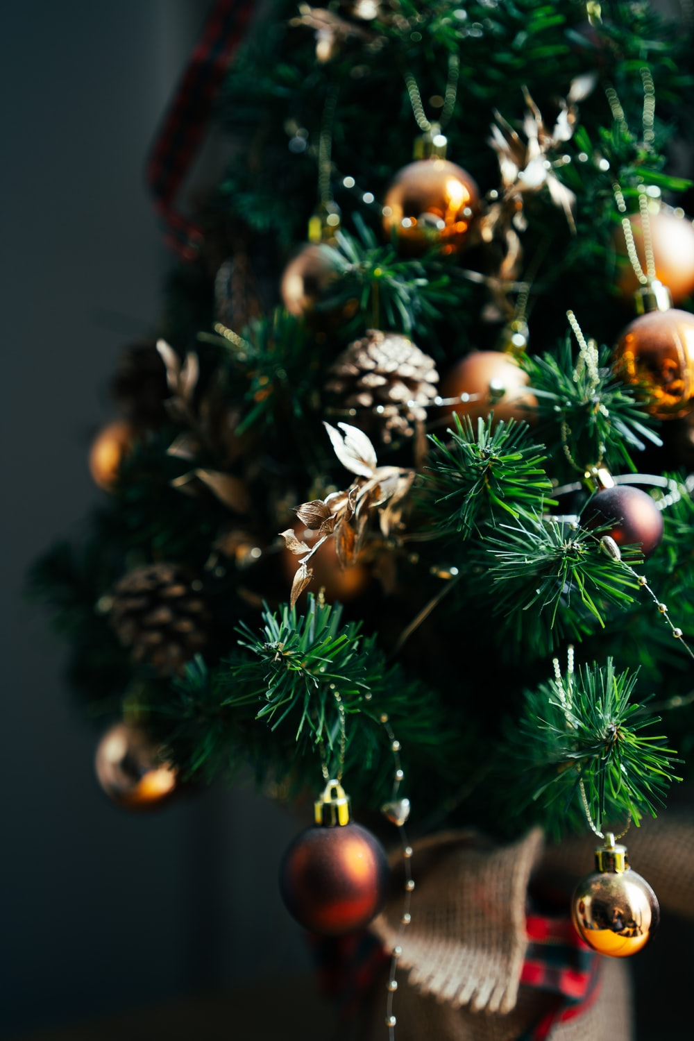 green pine tree with brown and white baubles