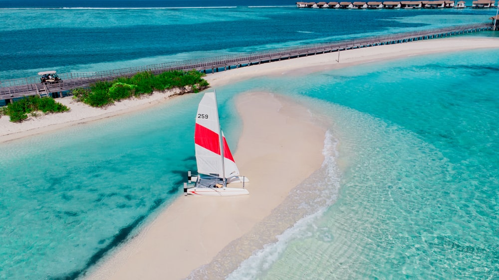 white and red sail boat on sea shore during daytime