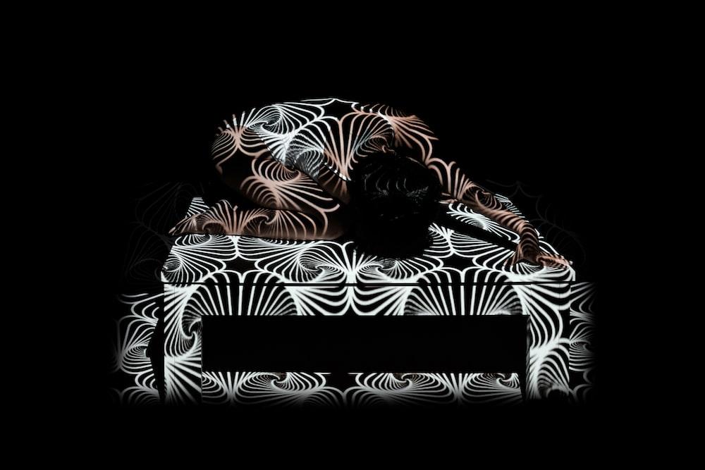 black and white zebra pattern textile
