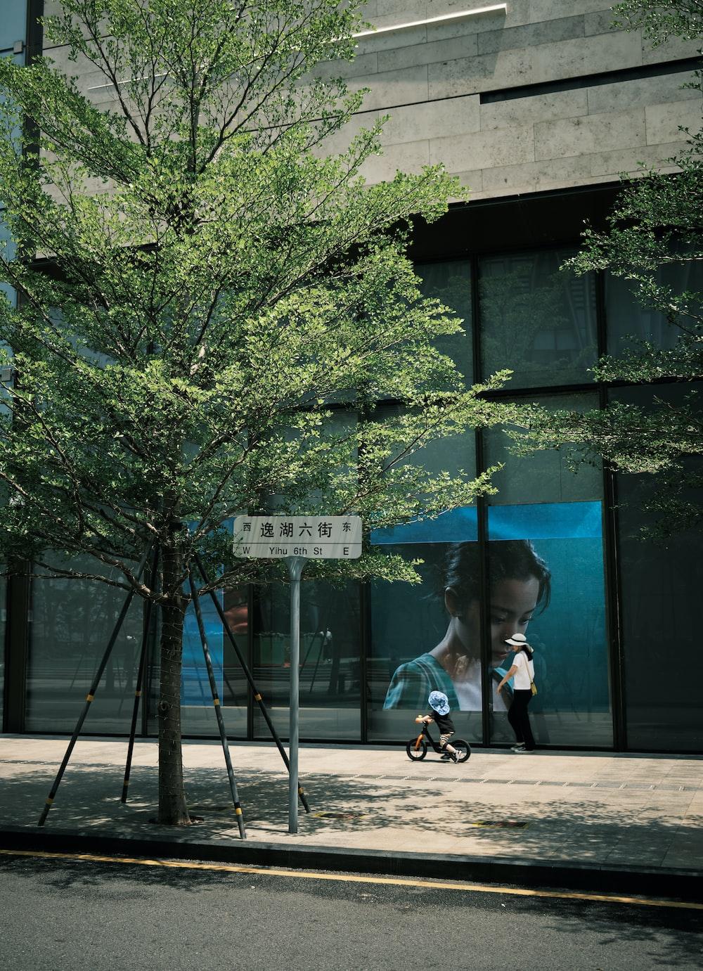 girl in black jacket riding bicycle near green tree during daytime