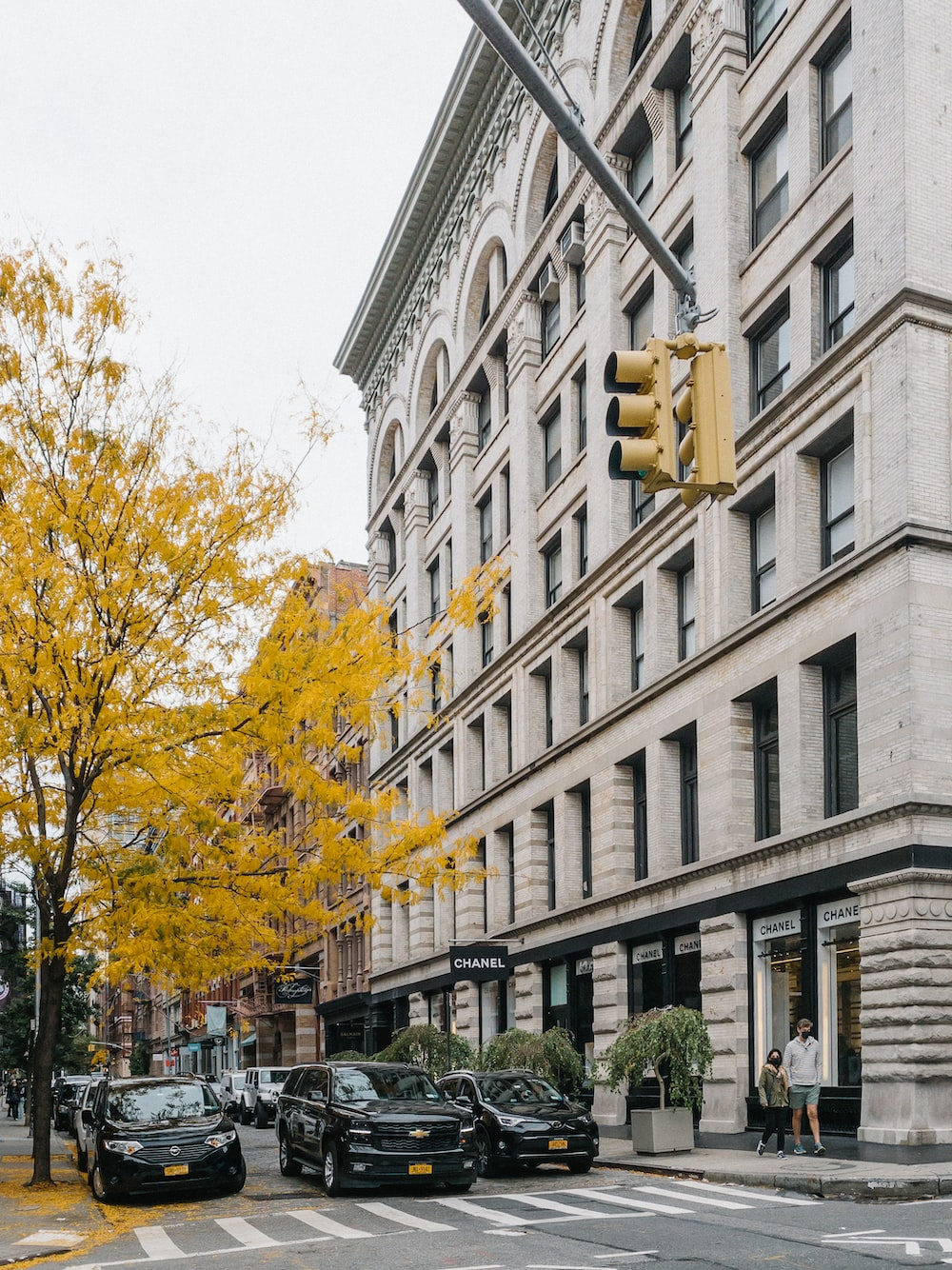 yellow leaf tree near white concrete building during daytime