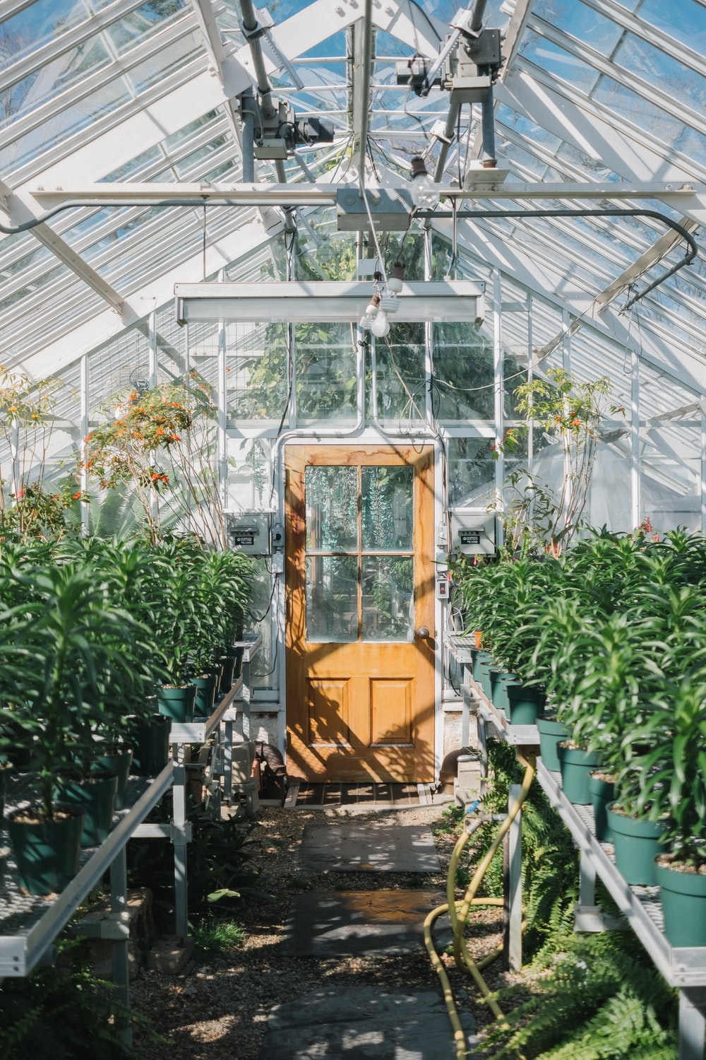brown wooden seat in greenhouse