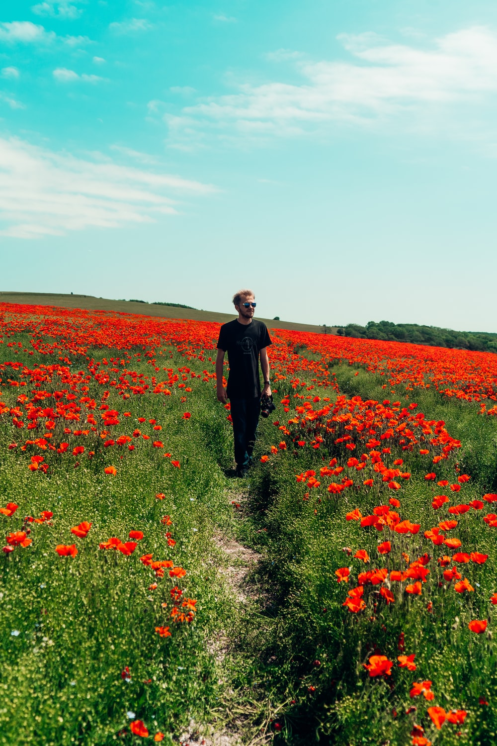 man in black jacket standing on red flower field during daytime
