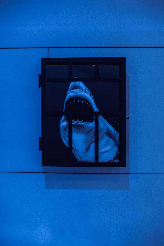 black wooden framed mirror on blue wall