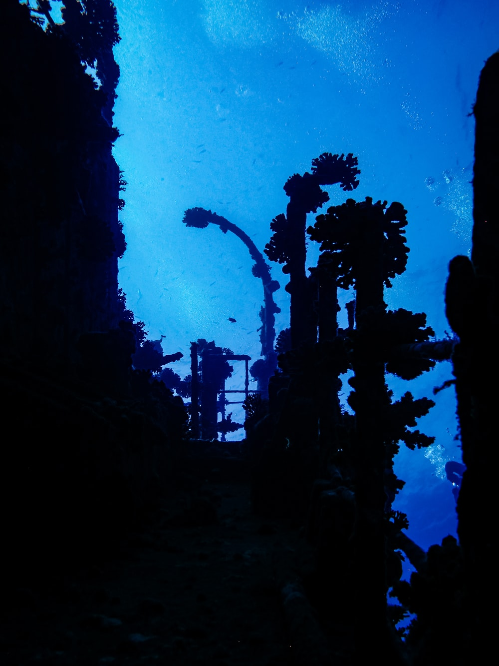 silhouette of person standing on rock formation during night time