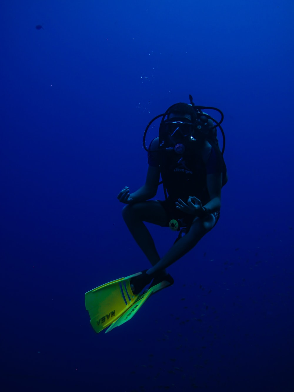 person in black and green wet suit under water