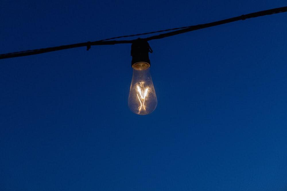 black light bulb turned on during night time