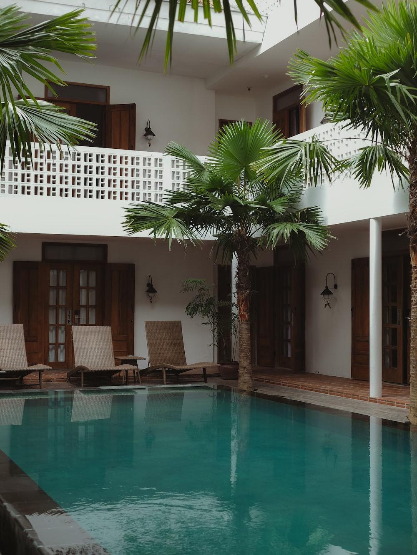 green palm tree near swimming pool