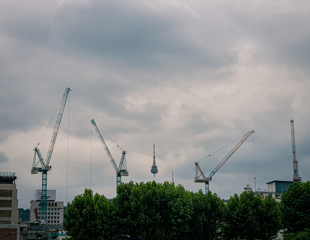 white and blue crane near green trees under white clouds during daytime