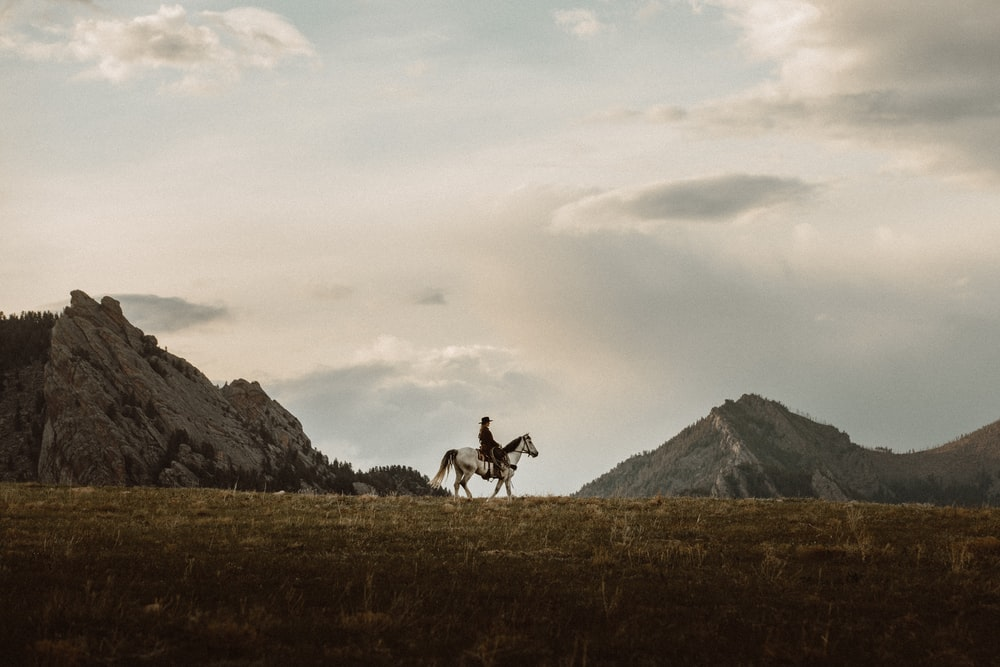 2 person riding horse on green grass field during daytime