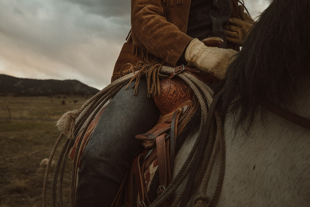 woman in brown leather jacket riding white horse during daytime