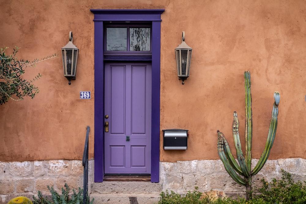 blue wooden door with green plant