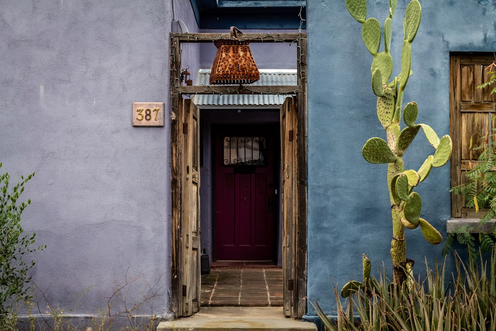 brown wooden door with green cactus plants