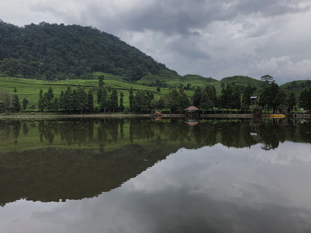 green trees beside lake under cloudy sky during daytime