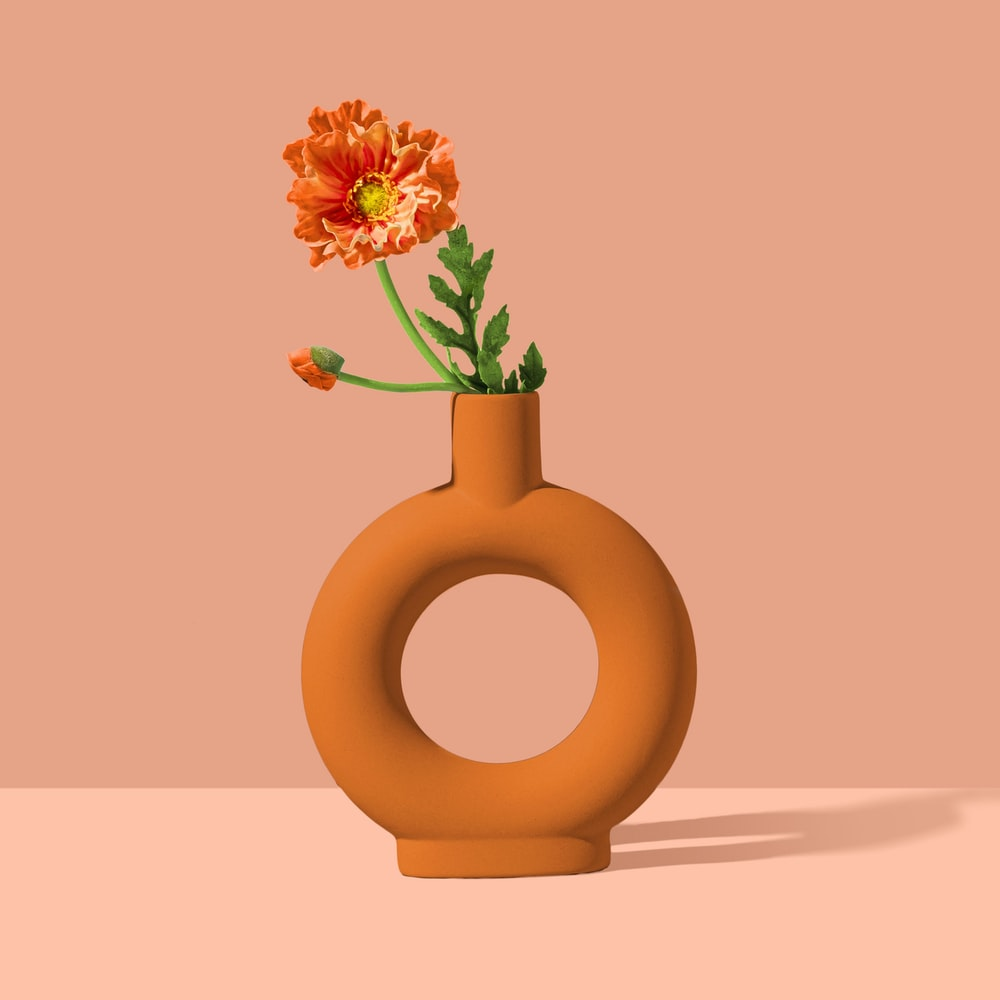 yellow and pink flower on brown round vase