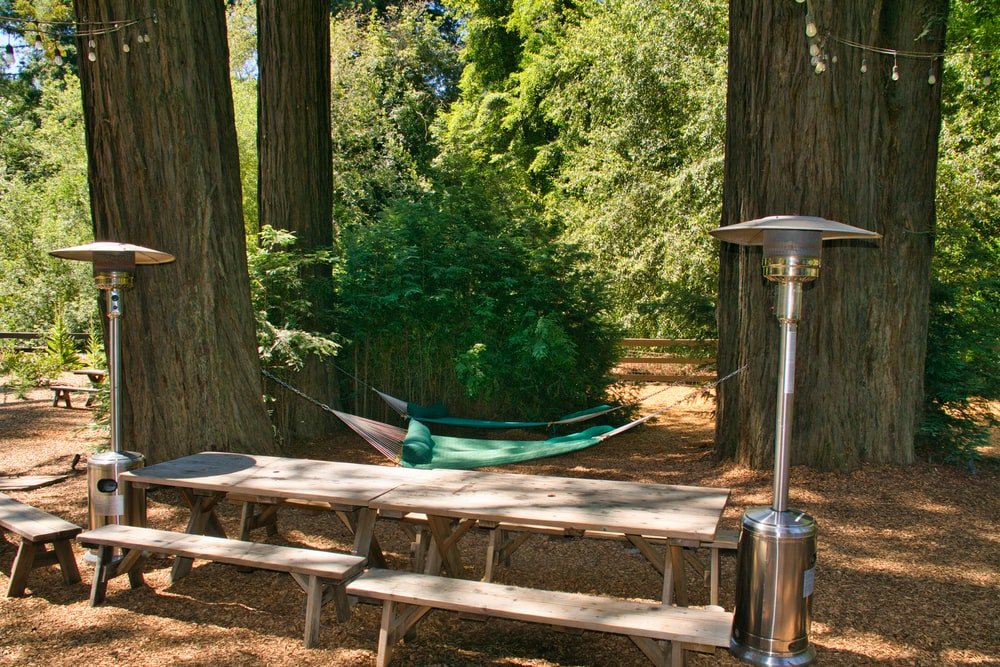 brown wooden picnic table near green trees during daytime