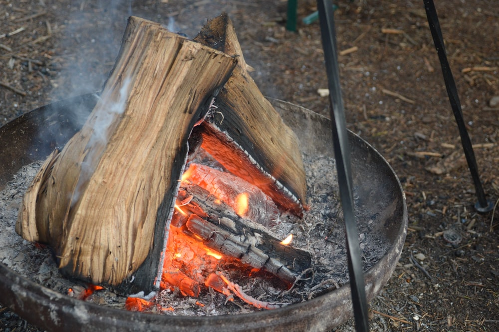 brown wood log on fire