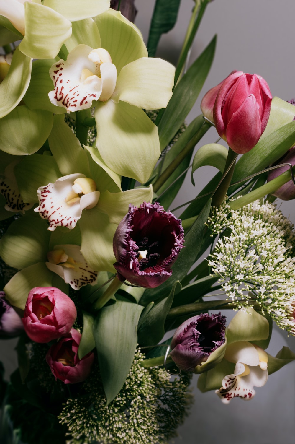 white and red tulips bouquet