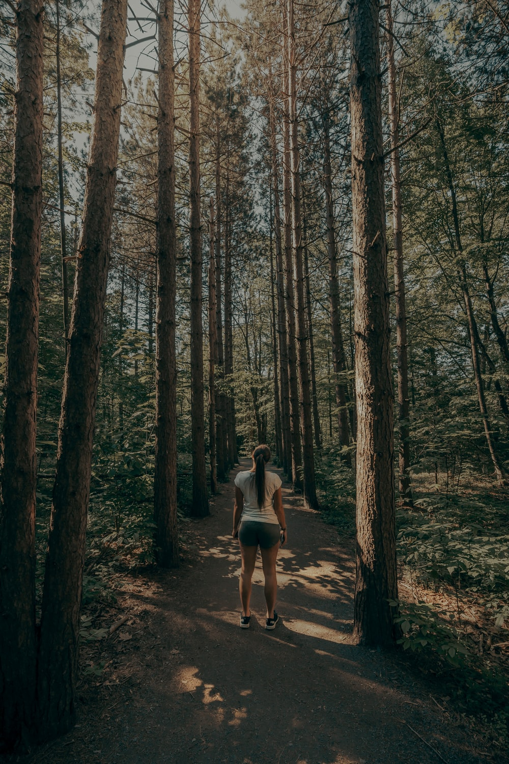 woman in white shirt walking on forest during daytime