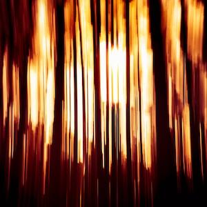 orange light on dark room