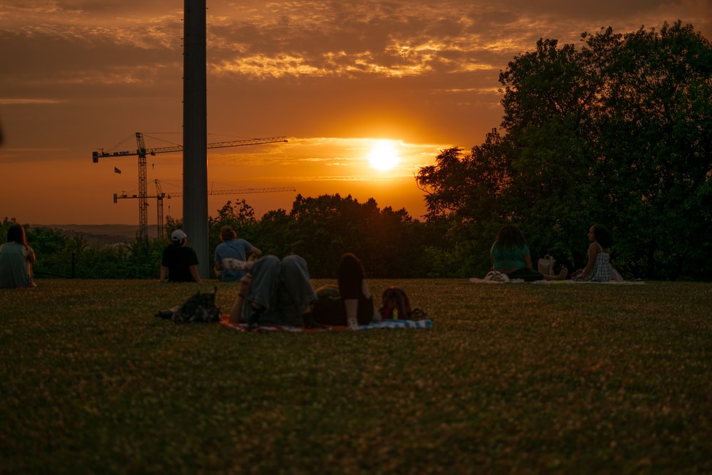 people sitting on grass field during sunset