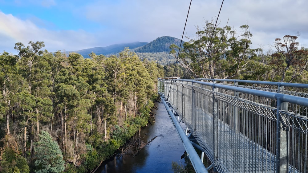 gray metal bridge over river