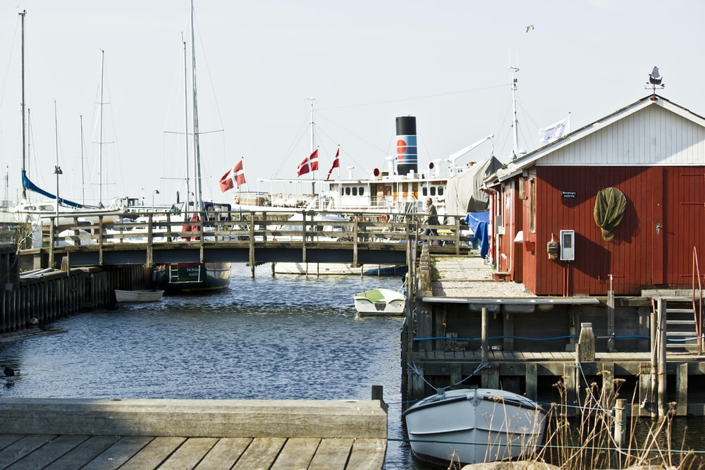 white and red boat on dock during daytime